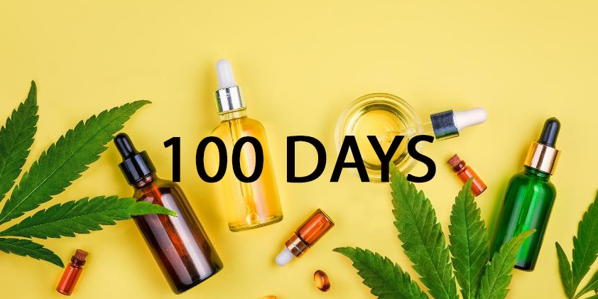 What Happens If You Take CBD Oil For 100 days?
