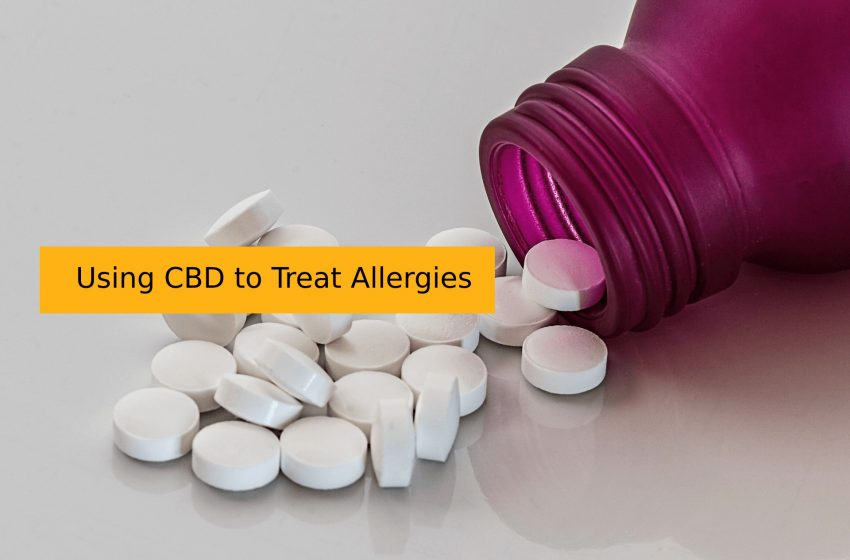 Allergy Medications and Drugs