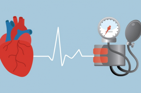 What You Should Know About CBD and High Blood Pressure